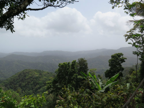 A mountainous vantage point between Verdant Vale and Morne La Croix