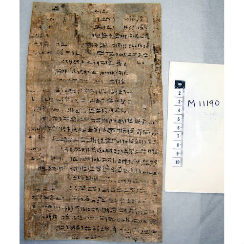 Egyptian papyrus from our collection