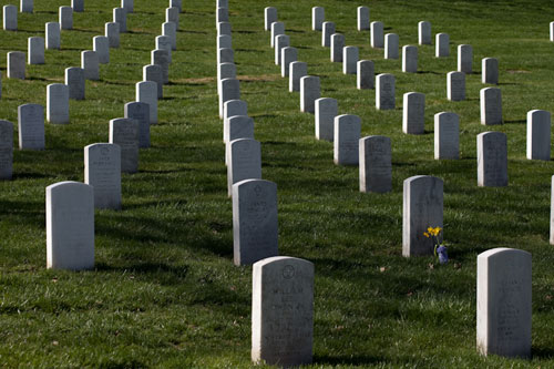 rows of headstones in Arlington National Cemetery