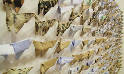 Rows of paper butterflies