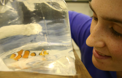 A woman looking at two small orange fish in a plastic bag