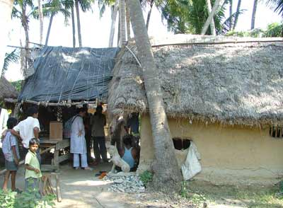 low built, mud house with a straw roof, palm trees and a young boy looking at the camera