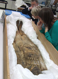 people looking at an Egyptian mummy