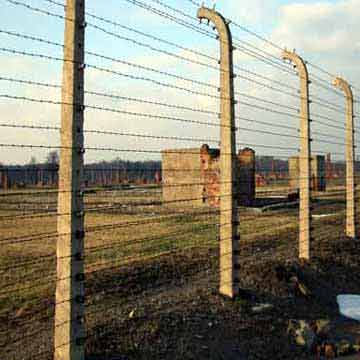 The image shows the railings and the remains of the Auscwitz ii concentration camp