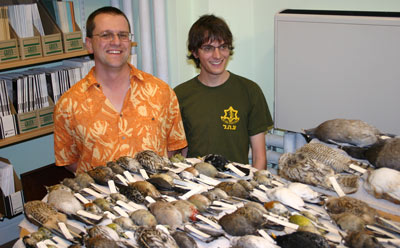 two man behind a table with lots of bird skins on it