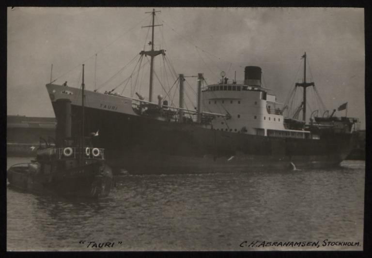 Photograph of Tauri, C H Abrahamsen card