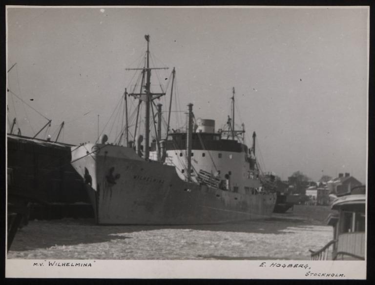 Photograph of Wihelmina, E Hogberg card
