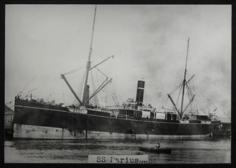 Photograph of Darius, A Currie and Company card