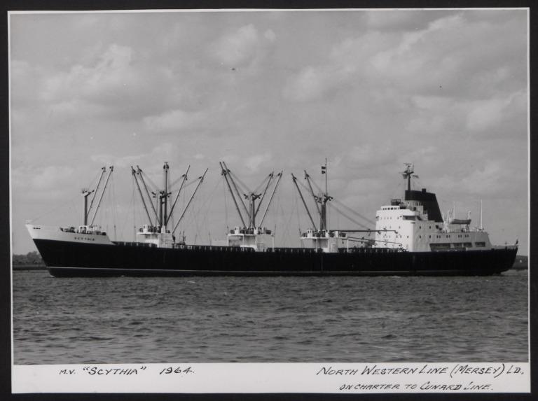 Photograph of Scythia, Cunard White Star Line card