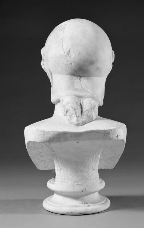 Bust of Athena/Minerva card
