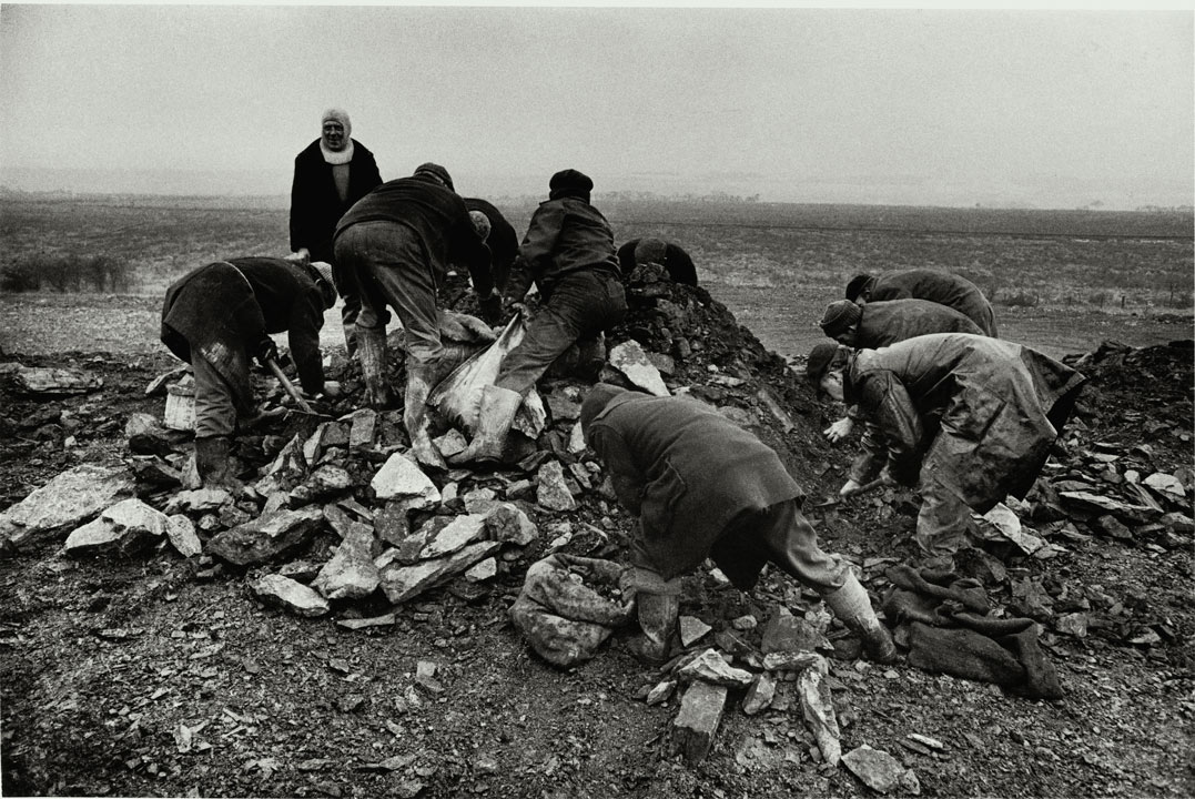men rummaging on a pile of coal