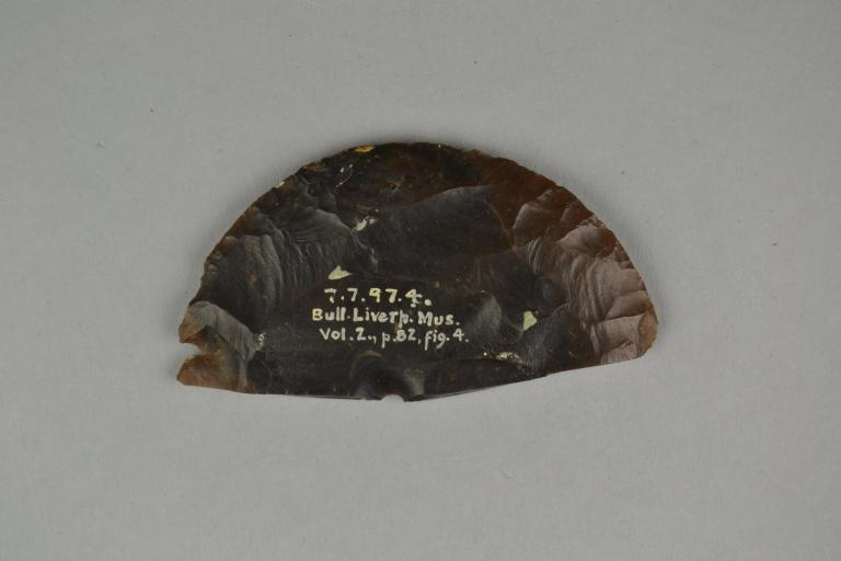 Flint Disc card