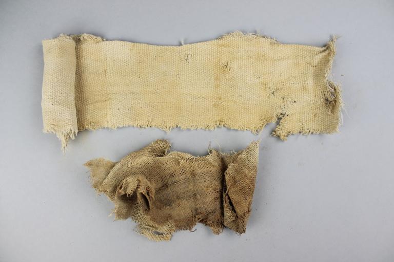 Animal Mummy Wrappings card