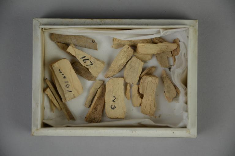 Carved Bone Fragments card