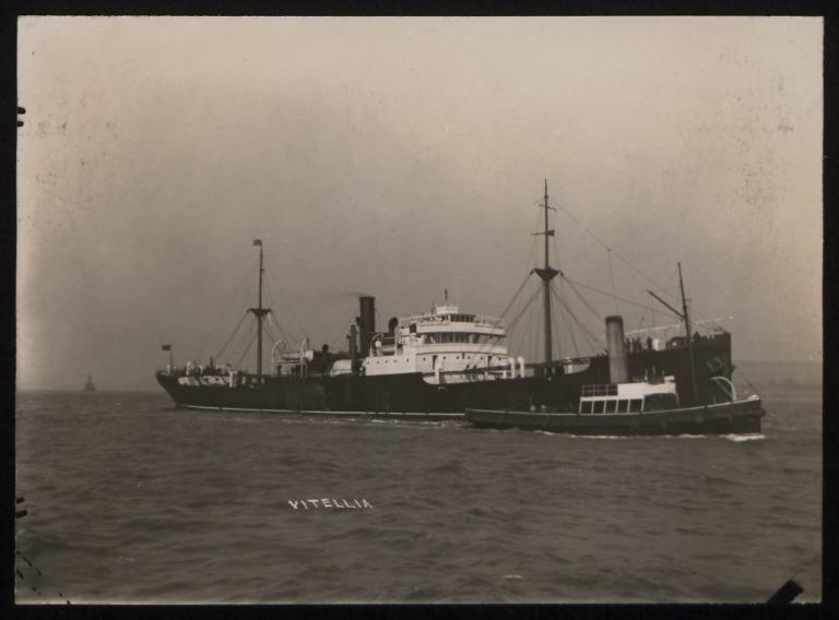 Photograph of Vitellia, Anchor Line card