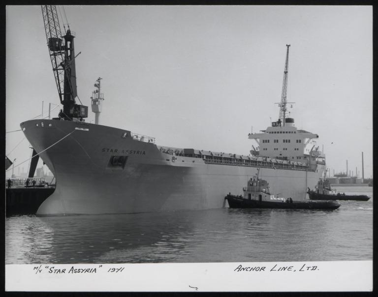 Photograph of Star Assyria, Anchor Line card