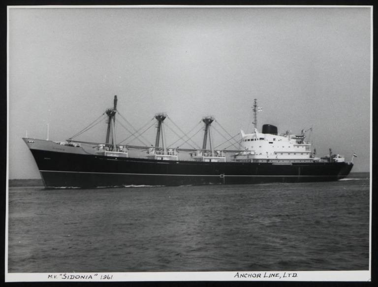 Photograph of Sidonia, Anchor Line card