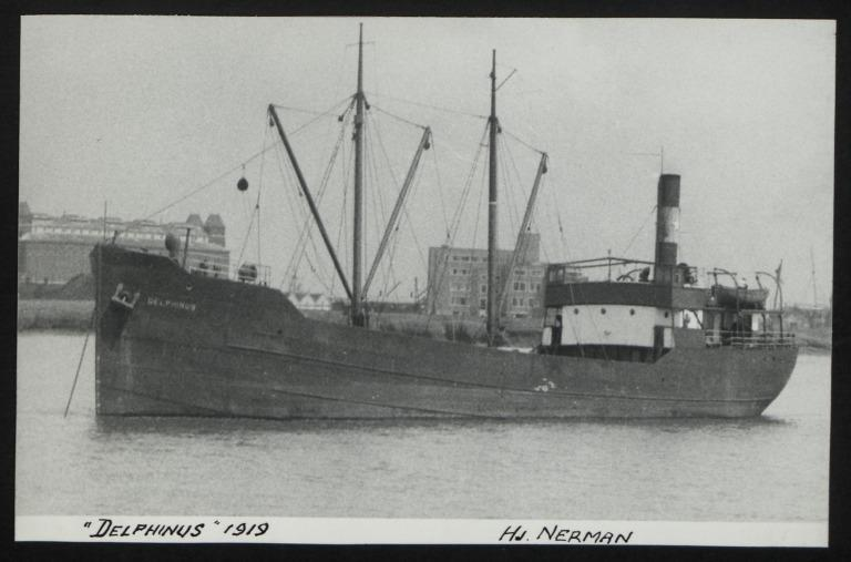 Photograph of Delphinus, Hj Nerman card