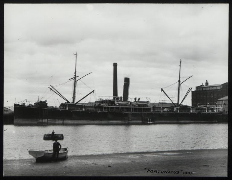 Photograph of Fortunatus, A Currie and Company card