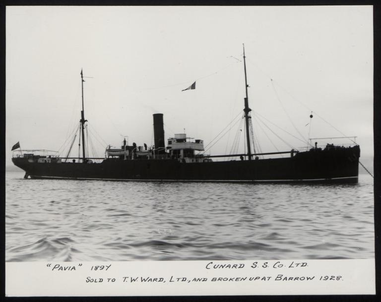 Photograph of Pavia, Cunard Line card