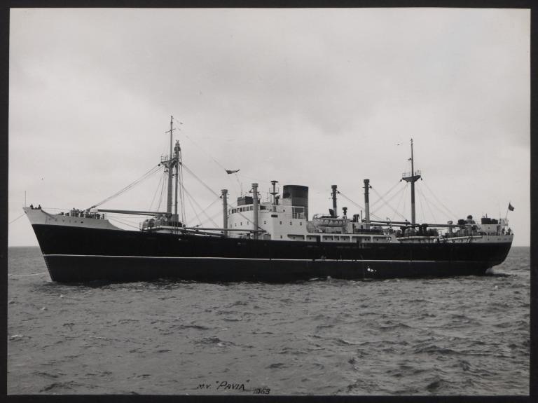 Photograph of Pavia, Cunard White Star Line card