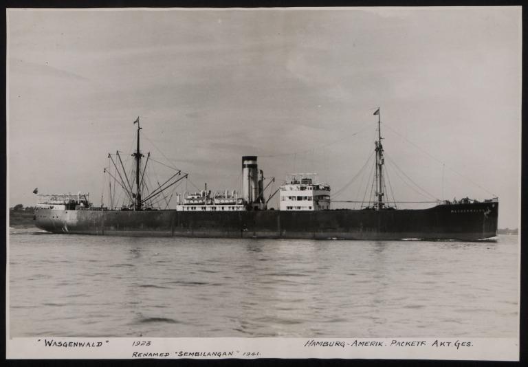 Photograph of Wasgenwald (r/n Sembilangan), Hamburg Amerika Line card