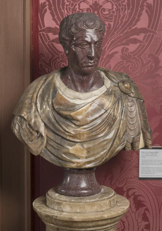 Bust of an Unknown Man card