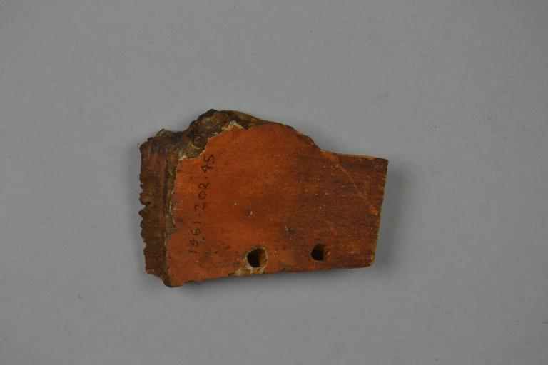 Coffin Fragment card