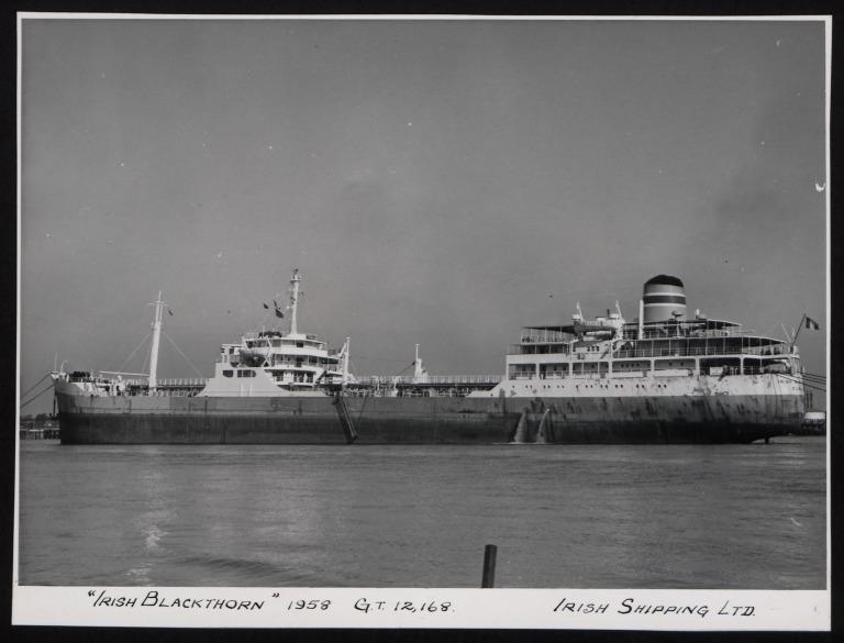 Photograph of Irish Blackthorn, Irish Shipping Limited card