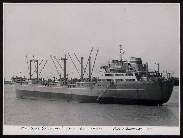 Photograph of Irish Sycamore, Irish Shipping Limited card