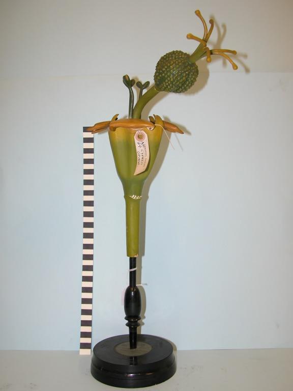 Euphorbia cyparissias card
