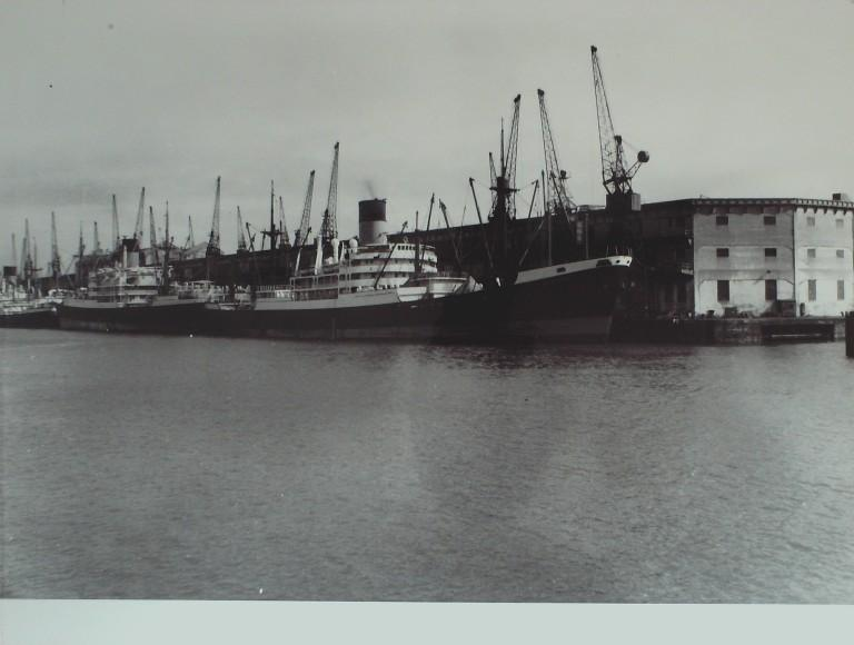 Photograph of Autolycus, Blue Funnel Line (Ocean Steam Ship Company) card