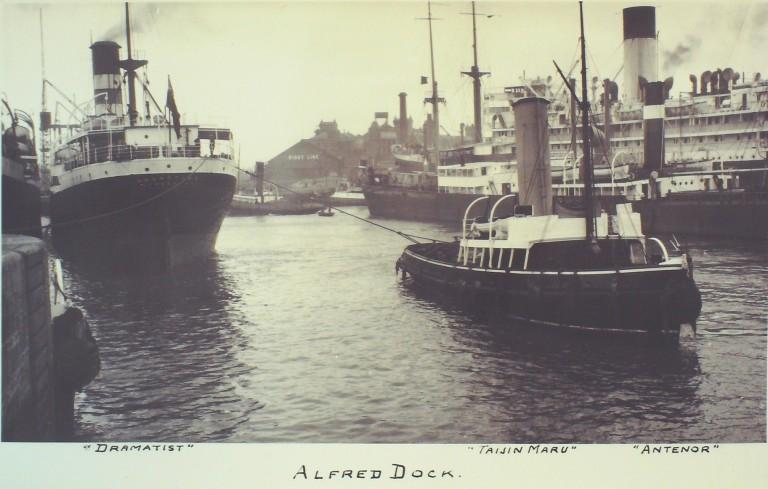 Photograph of Alfred Dock with vessels Dramatist, Antenor and Taisin Maru card