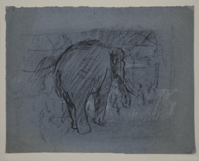 Elephant in a Circus Tent card