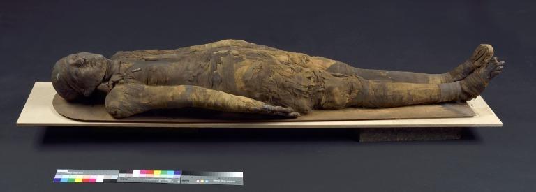 Human Remains; Mummified Body card