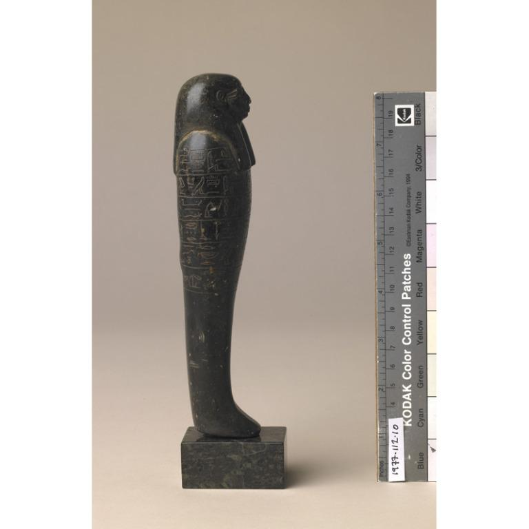 Shabti of Qenamun card