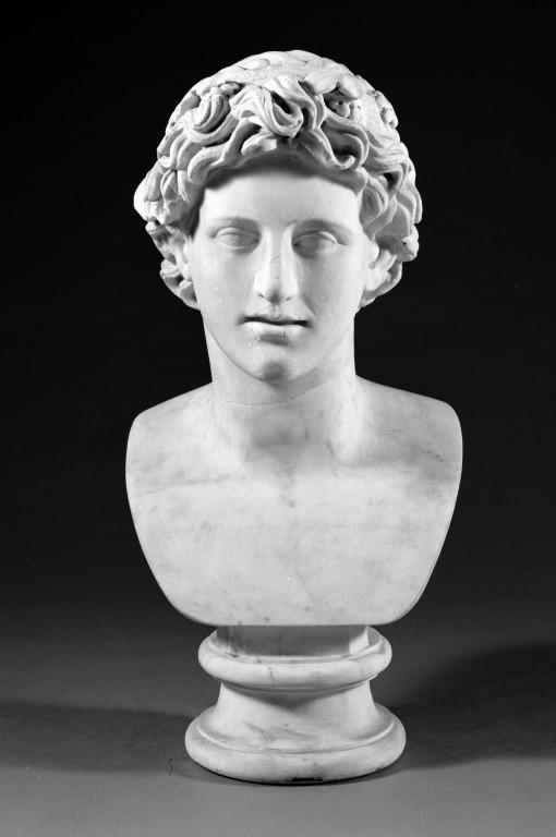 Bust of a Young Man card