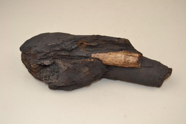 Human Remains; Mummifed Arm with Papyrus Roll card