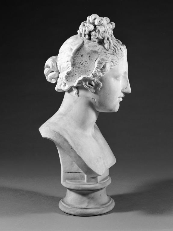 Bust of Aphrodite card
