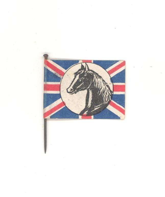RSPCA horse flag card