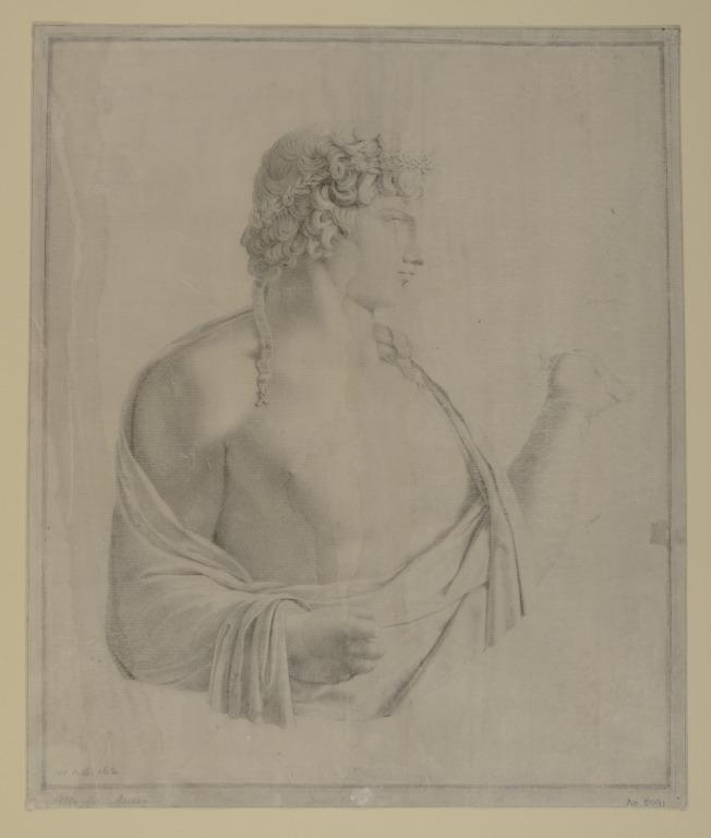 The Albani Antinous card