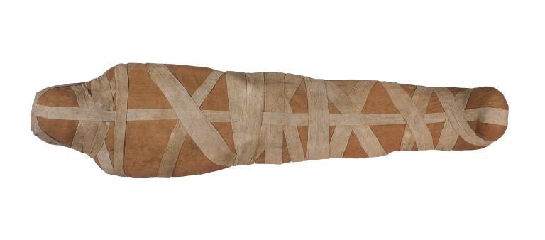 Human Remains; Mummified Body of Padiamun card