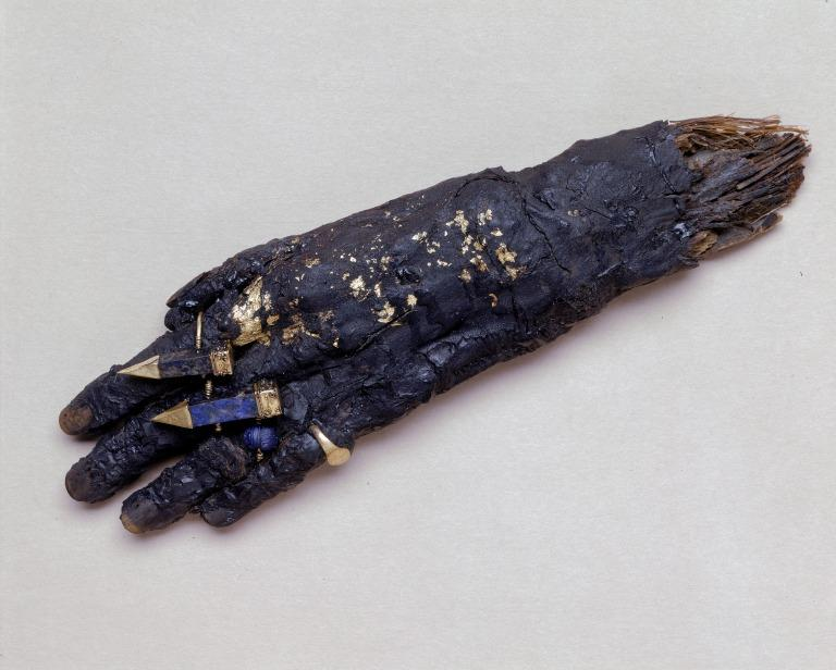 Human Remains; Mummified Hand with Four Rings card