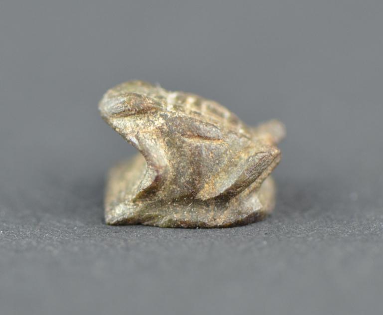 Frog Amulet card