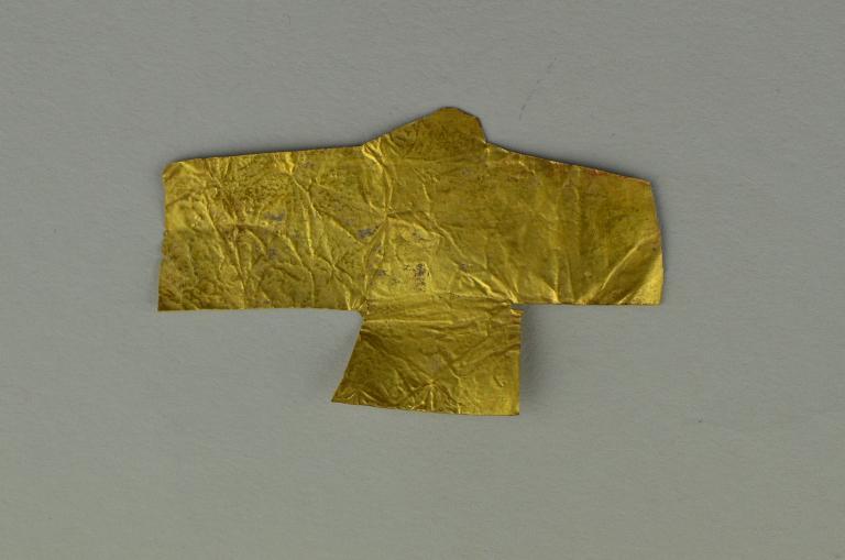 Gold Foil Hawk card