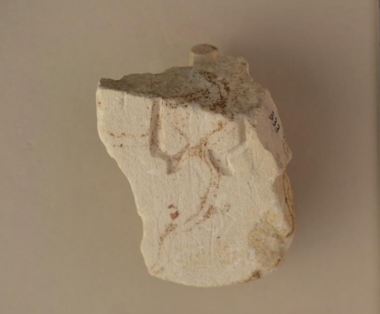 Mould Fragment card