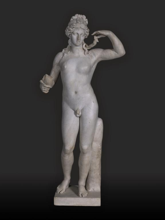 Statuette of Standing Hermaphrodite card