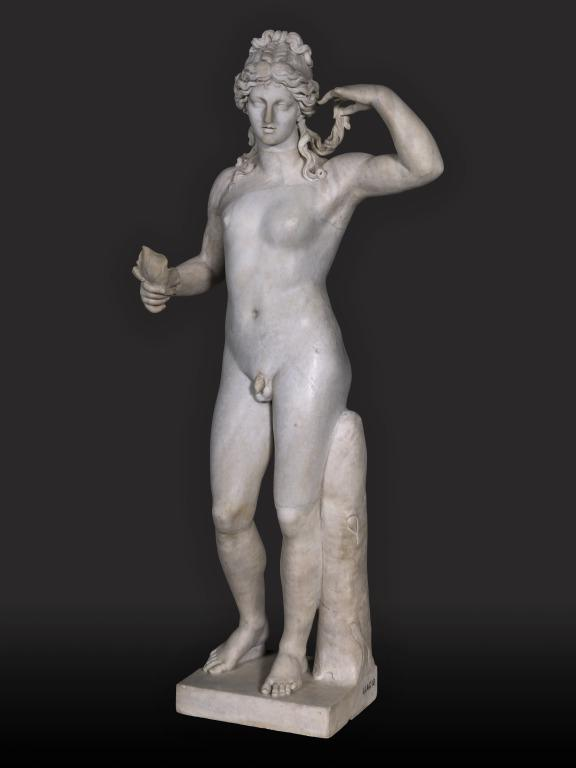 Statuette of Standing Hermaphrodite card