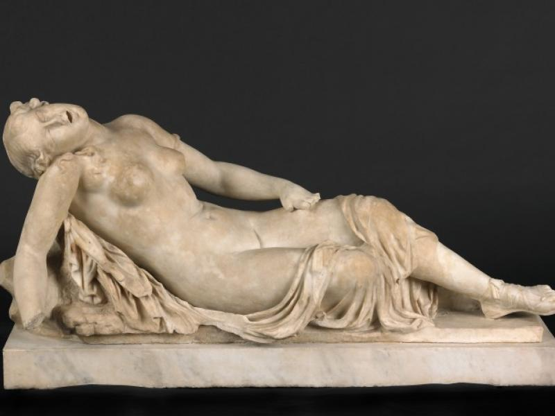 Hermaphrodite Picture said